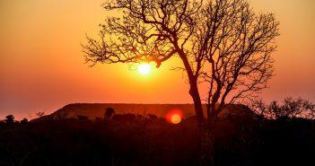 Madagscar Africa